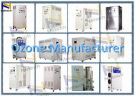 Wall Mounted Types 6g 12g Timer Setting Ozone Air Purifier For Cosmetics Plant